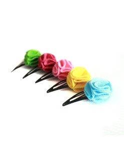 Dianne 5in1 Hair Clips