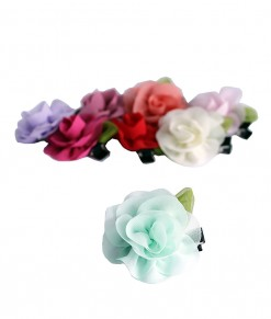 korean-chiffon-clips-1